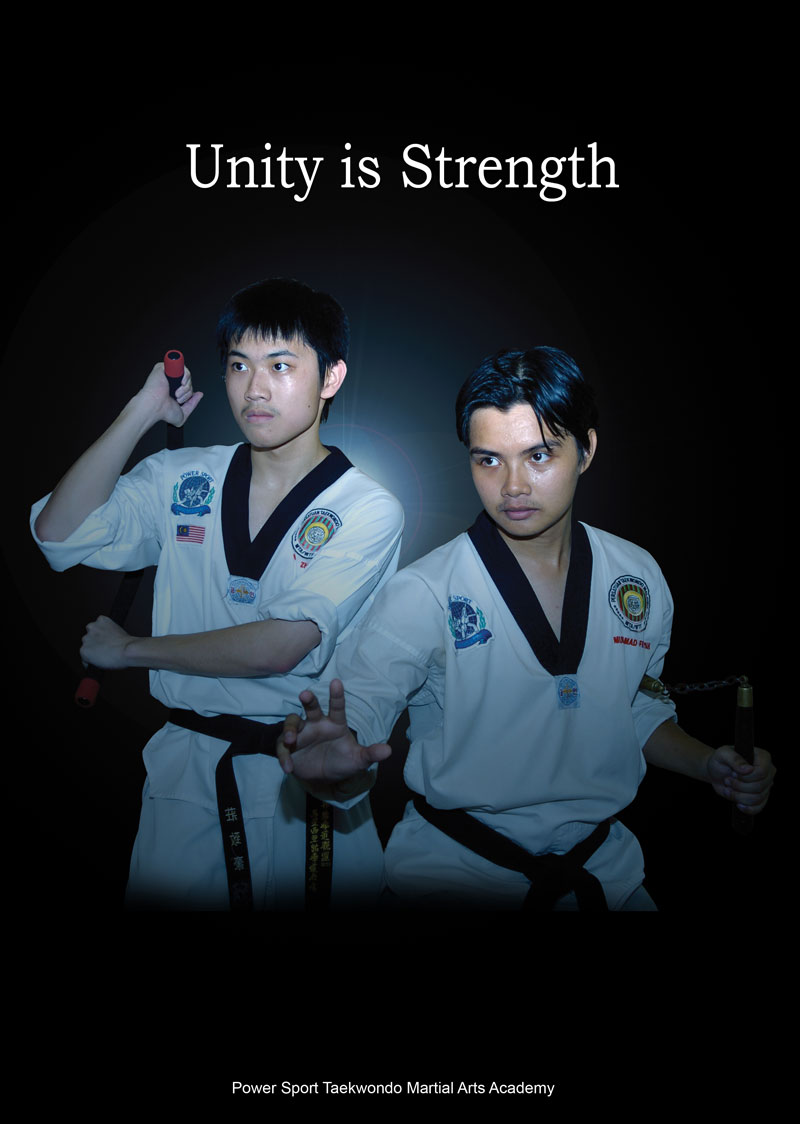 unity is strenght Strength (strĕngkth, strĕngth, strĕnth) n 1 the state or quality of being strong physical power or capacity: the strength needed to lift a box 2 the capacity to resist.