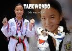 Taekwondo, My Way of Life