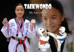 Taekwondo, My Way of Life